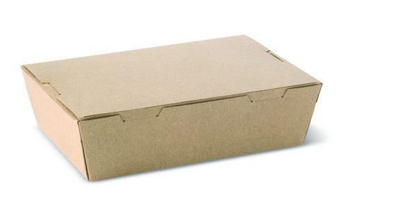 L333S0010 Small Lunch Box Brown SCALE_sml